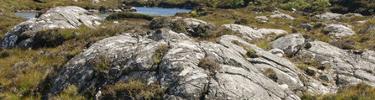 Territoire du Clan des Roches